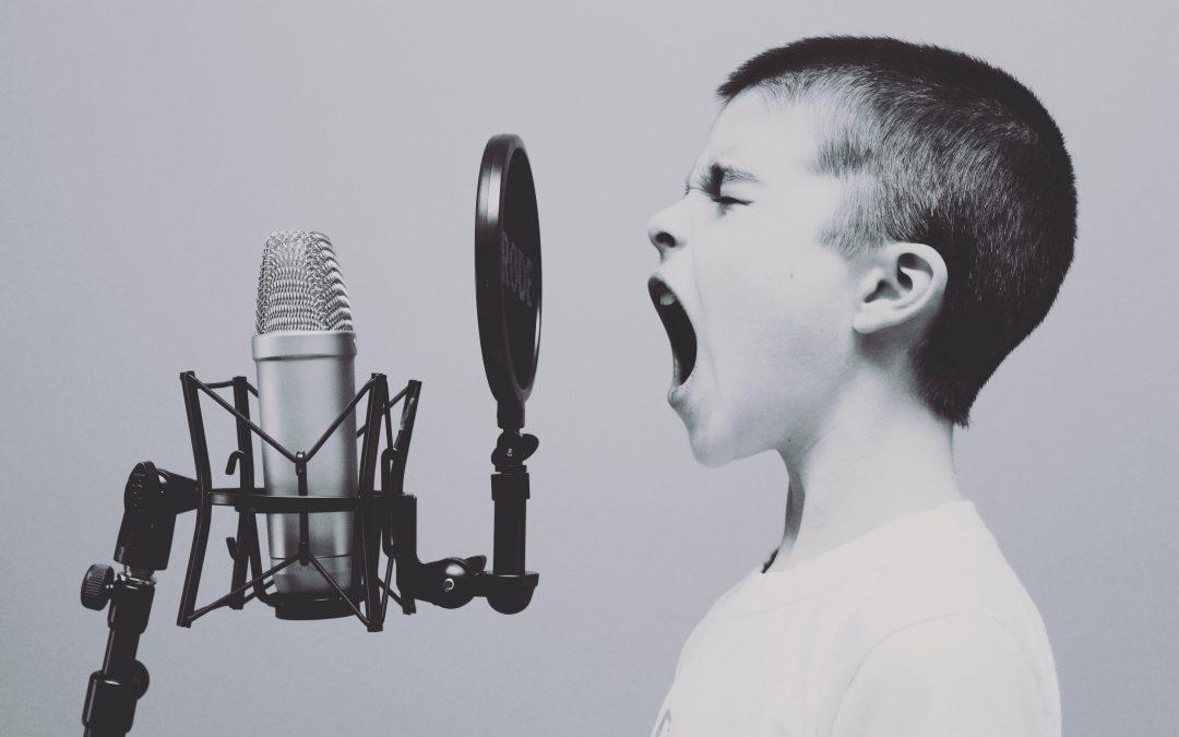 voice - vibepay